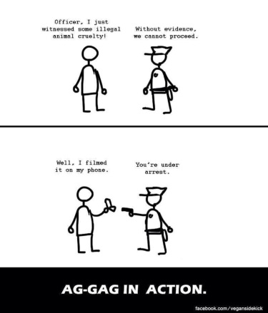 How the Ag-Gag Law works