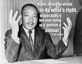 MLK Animal Quote