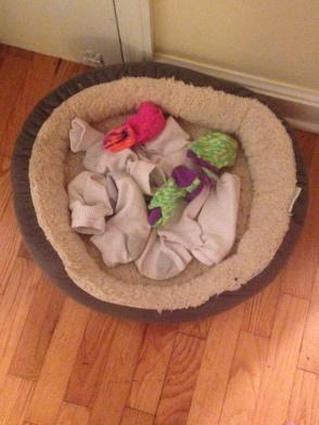 rufus-socks