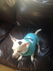 petra-sweater-2