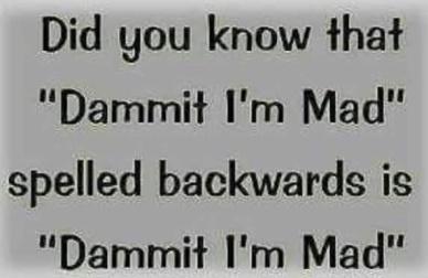 dammit-spelling